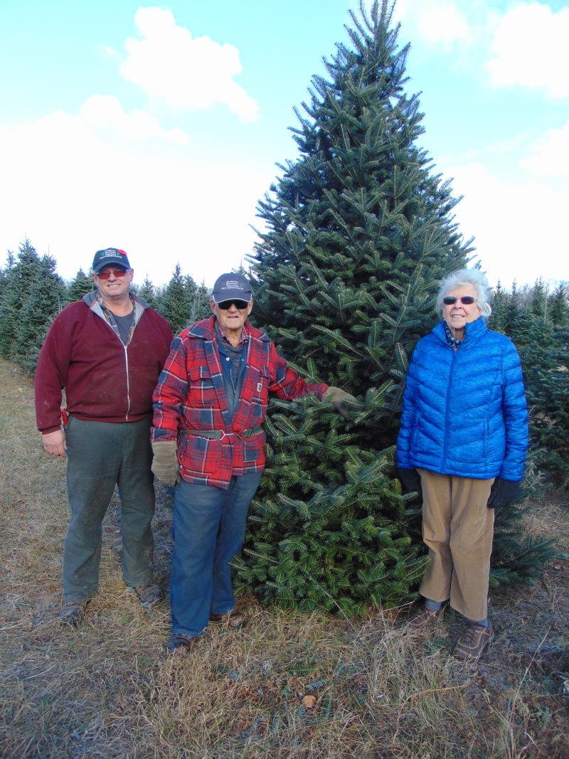 Local tree farmer grows the spirit of Christmas for 68 years